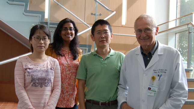 Teitelbaum lab from left to right: Yan Zhang, Nidhi Rohatgi, Wei Zou, Steve Teitelbaum